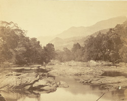 View on Tambrapoorney [Tambraparni River], Tinnevelly District. 254358